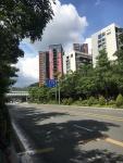 深圳为数不多的山景住宅,却陷入学位危机?买房大家要擦亮眼!