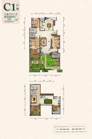 翰林庄园C1户型-3室3厅2卫1厨建筑面积220.00平米