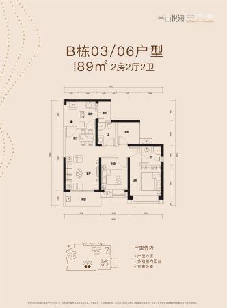 半山悦海花园B栋03/06