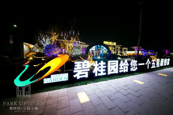 商河碧桂园公园上城项目现场