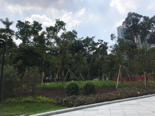 绿景美景广场小区配套