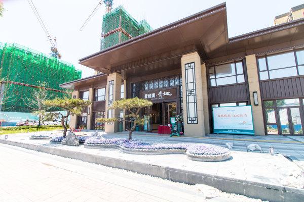 碧桂园青城实景图