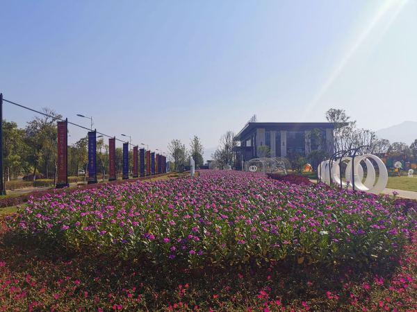 湖南建工·东玺台实景图