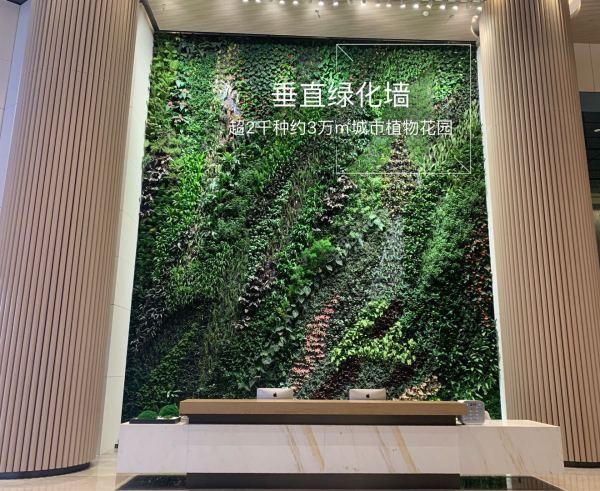 中洲滨海商业中心项目现场