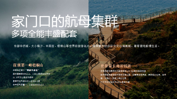 深圳盛迪嘉海湾壹号效果图