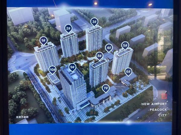 新空港孔雀城领航国际效果图