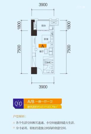 中泰财富湘江公寓户型43