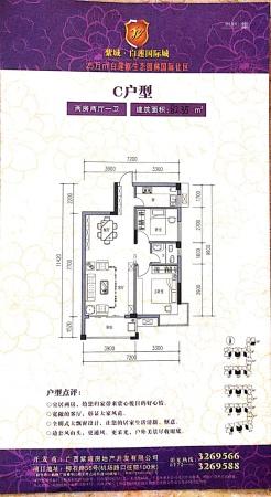 紫域白莲C户型