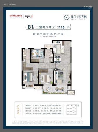 祥生东方樾B1户型